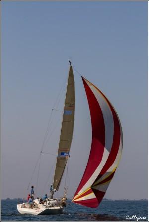 trofeo della Laguna 2015